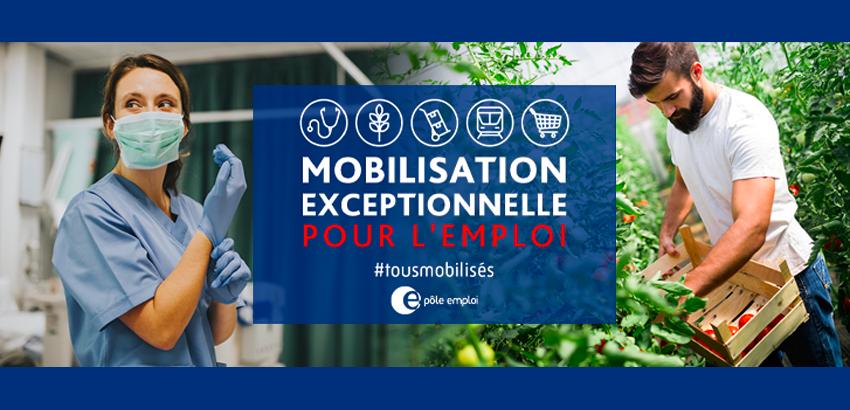 Bannière officielle #MobilisationEmploi
